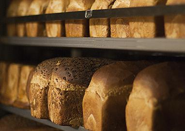 Vechtbrood