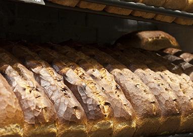 Volkenbrood